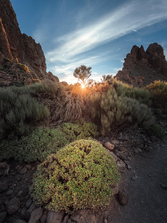 TENERIFE | 030mm-photography
